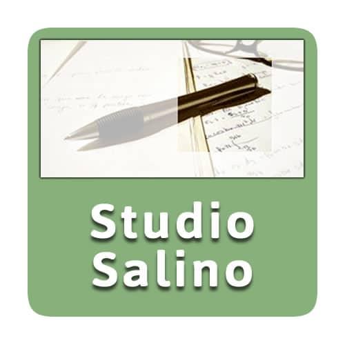 Logo Studio Salino
